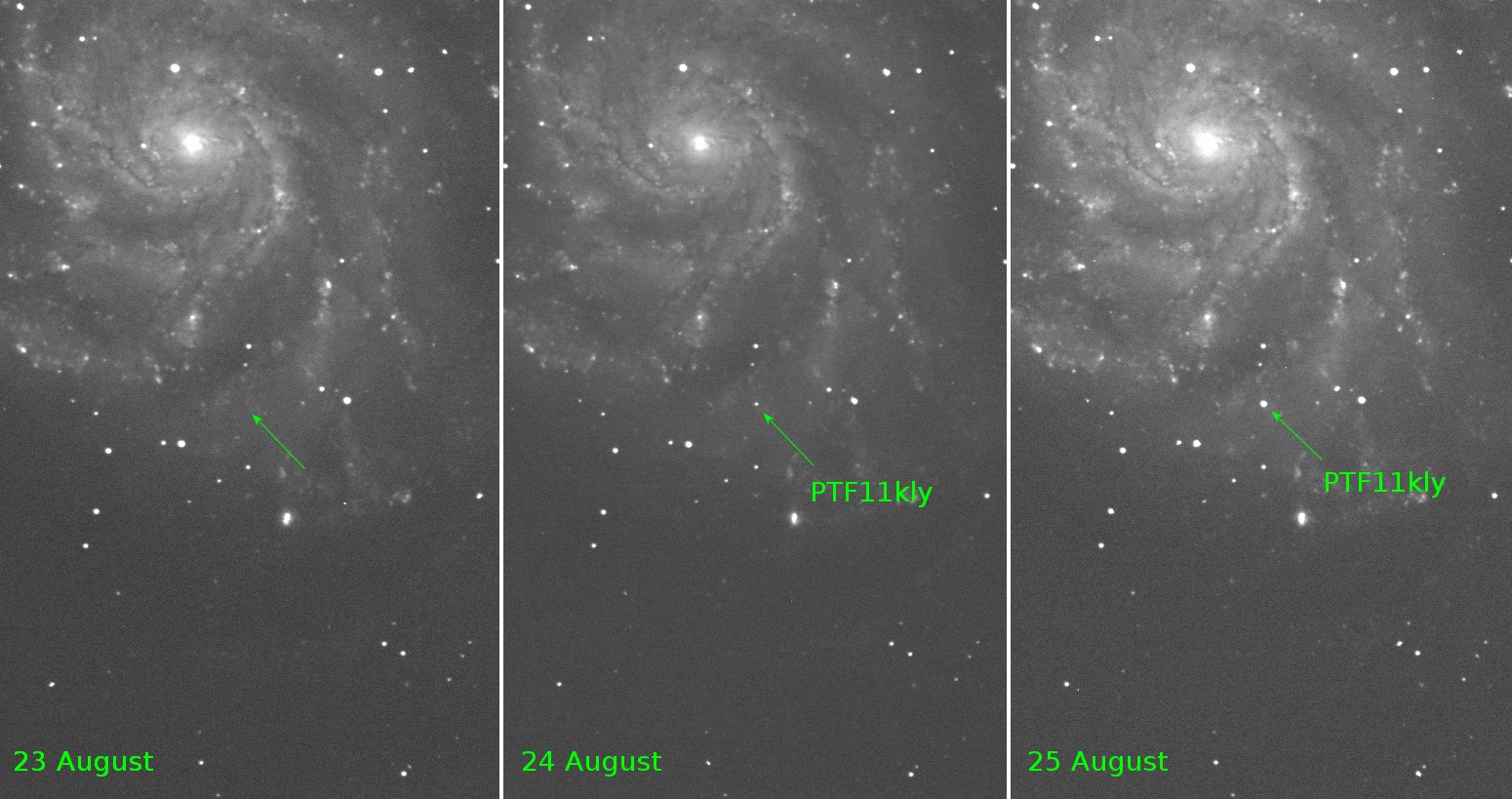 Discovery image of supernova PTF11kly (Peter Nugent/PTF collaboration)