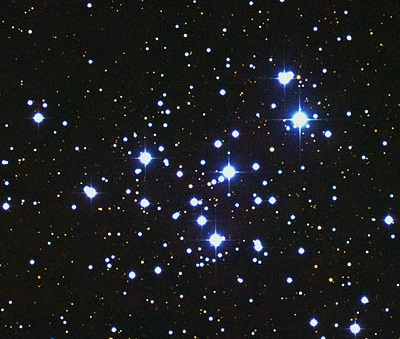 NGC 6231 - Open Cluster (credit - Australian Astronomical Observatory / David Malin)