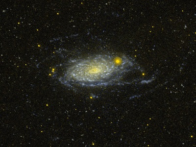 M63 The Sunflower Galaxy (credit:- GALEX/NASA)