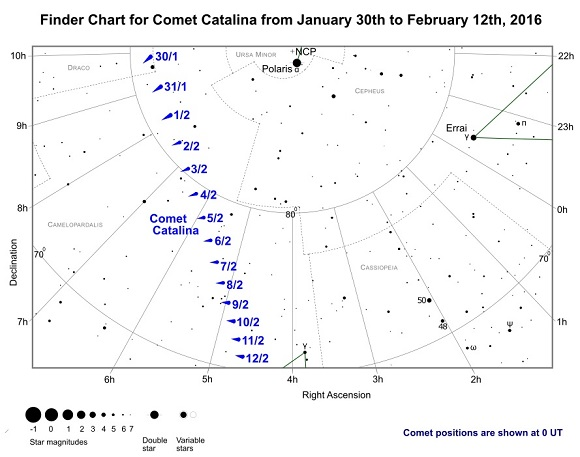 Comet Catalina (C/2013 US10) Finder Chart from January 30th to February 12th, 2016 (credit:- freestarcharts)