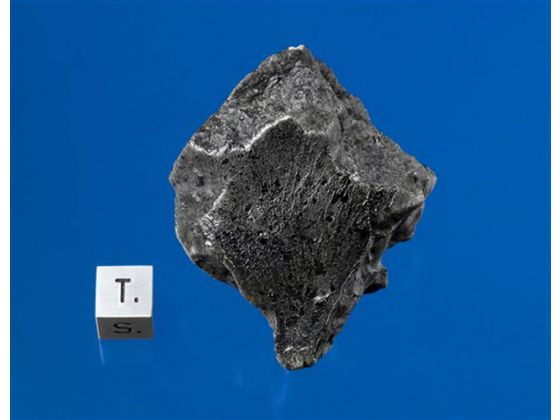 A Martian meteorite recovered in Morocco in December 2011 (Darryl Pitt/Macovich Collection)