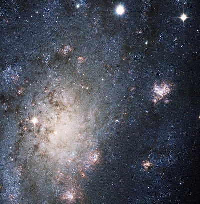 NGC 2403 (credit - NASA, ESA, Filippenko (Univ. of California), Challis (Harvard-Smithsonian Center for Astrophysics), et al.)