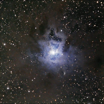 NGC 7023 - Reflection Nebula (credit:- Hunter Wilson)