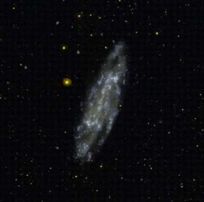 NGC 4236 - Barred Spiral Galaxy (GALEX/STScl)